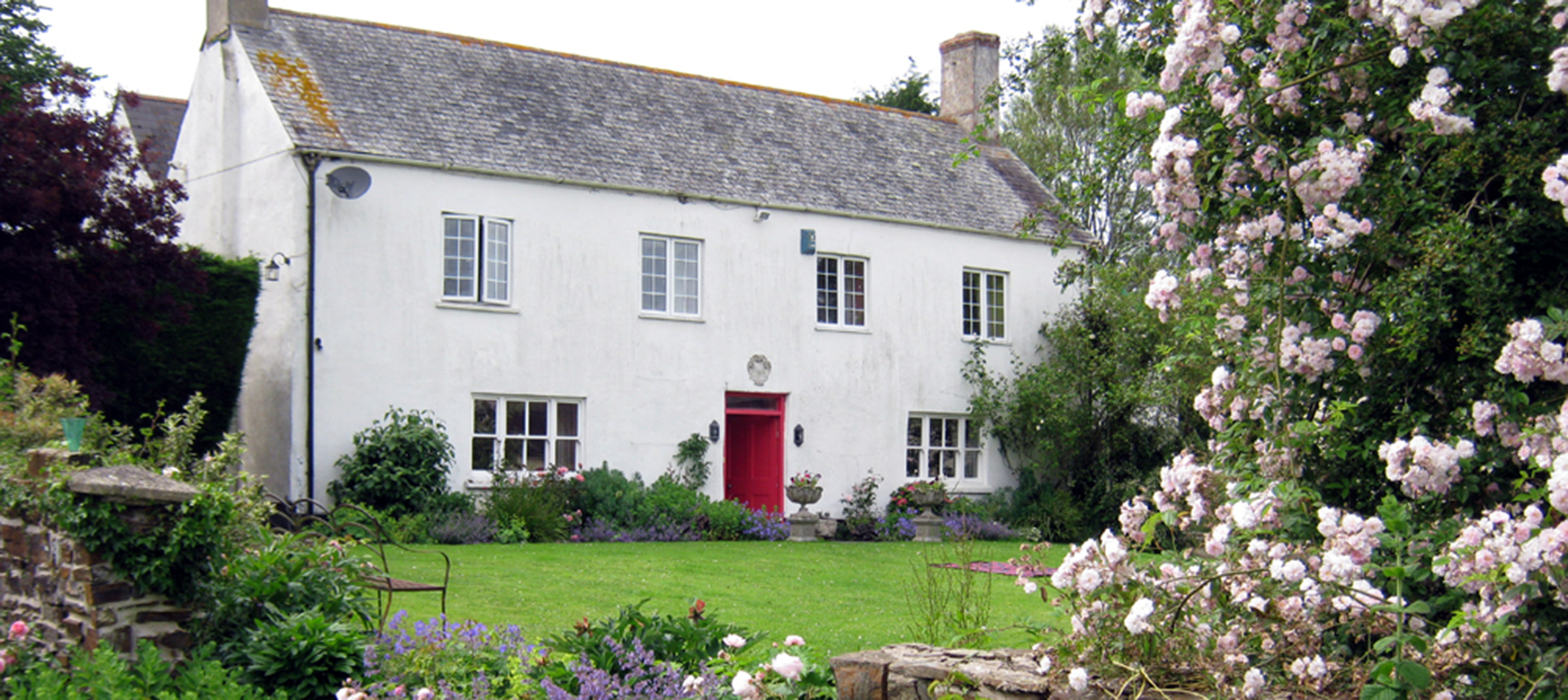 north devon horse bed and breakfast
